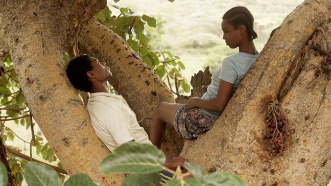 Fig Tree movie review